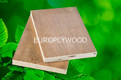 europlywood poplar plywood