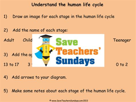 y2 explanation text cycles by sham36 teaching