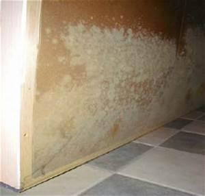 Sauna Im Keller : alles ber feuchtigkeit in der sauna ~ Buech-reservation.com Haus und Dekorationen