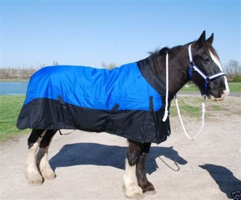 horse draft blankets