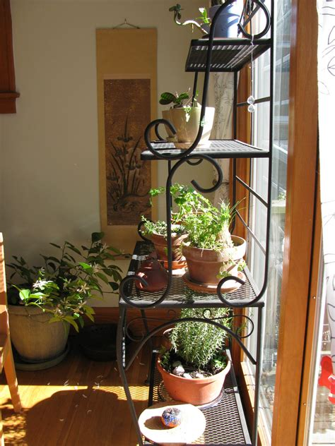 Indoor Window Garden by Growing Herbs Indoors