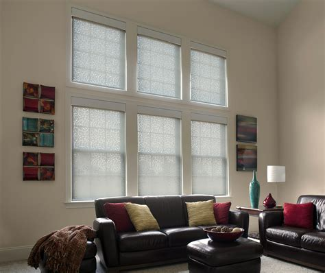 dual roller shades  privacy shade drawn  lutron