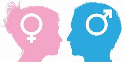 Facts Fun Gender Roles Clipart Different Transparent