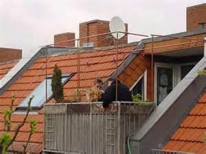 balkon katzensicher machen ohne netz der sichere balkon