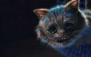 Cat, Wallpaper, Tumblr