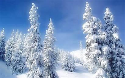 Desktop Winter Scenes Wallpapers Snow Scene