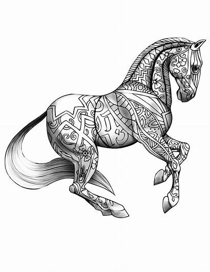 Coloring Adult Books Horse Shaded Decals Much