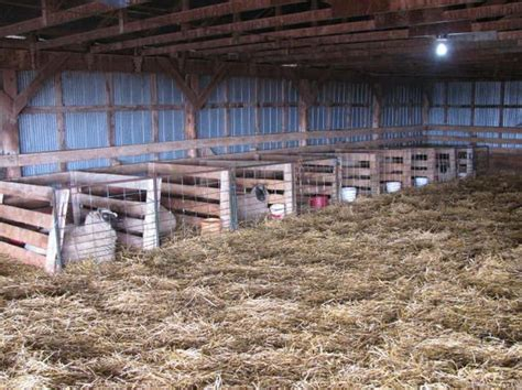 north   lambing pens     total  close   ewes builds