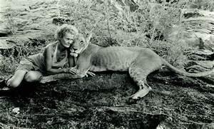 Borne Free Lyon : elsa lioness grave meru kenya adamson ~ Medecine-chirurgie-esthetiques.com Avis de Voitures