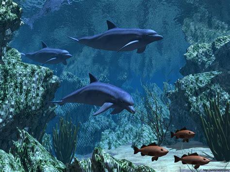 fond d ecran poisson qui bouge fond d 233 cran fond marin anim 233 gratuit fonds d 233 cran hd