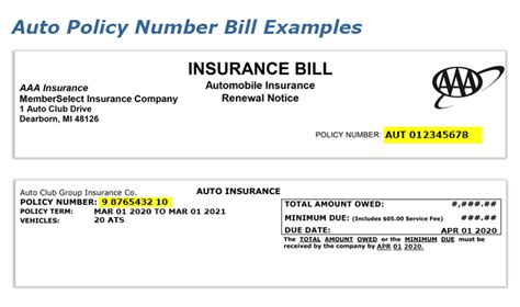 From plan type to how much you if you have dependents—like a spouse or children—on your health insurance policy, their names it's also the number health insurers use to look up specific members and answer questions about claims. AAA - Find Your Auto Insurance Policy Number