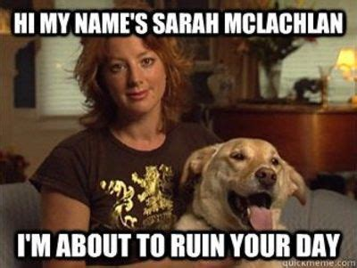 In The Arms Of An Angel Meme - sarah mclachlan wants to ruin your day internet memes juxtapost