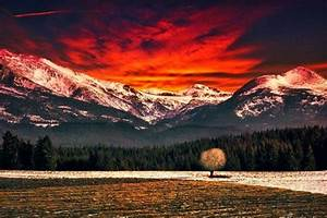 nature, , landscape, , mountain, , forest, , field, , snowy, peak, , red, sky, , clouds, , trees, wallpapers, hd