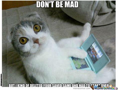 Bad Kitty Meme - bad kitty meme 28 images pin bad kitty memes 2123 results on pinterest bad cat memes com
