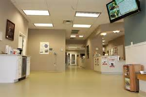 animal clinic of animal hospital in germantown md montgomery county