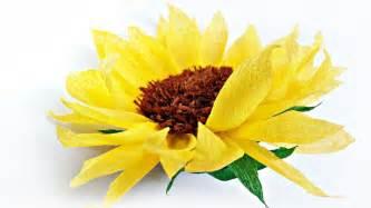 Diy Tissue Paper Sunflower Flower For Wall Backdrop