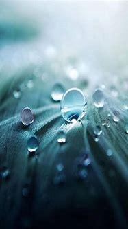 3d Water Drop wallpaper by _sn0w_ - e5 - Free on ZEDGE™