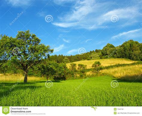 schoene sommer landschaft stockfoto bild von beleuchtete