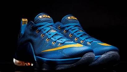 Lebron Nike Jordan Low Air James Shoes