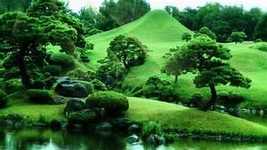 Mrwallpaper.com/wallpapers/Green Garden 1920×1200.jpg ...