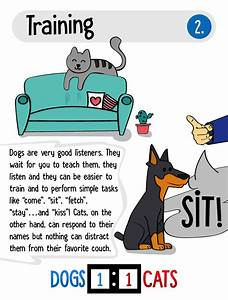 8 reasons why dogs are better than cats displayed by an awesome infographic