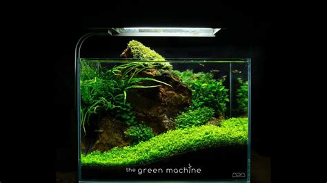 Aquascape Nano by Rock Nano Aquascape By Findley