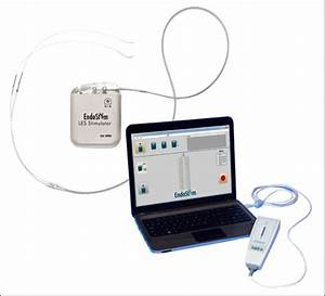 Lower Esophageal Sphincter  Les  Stimulation System