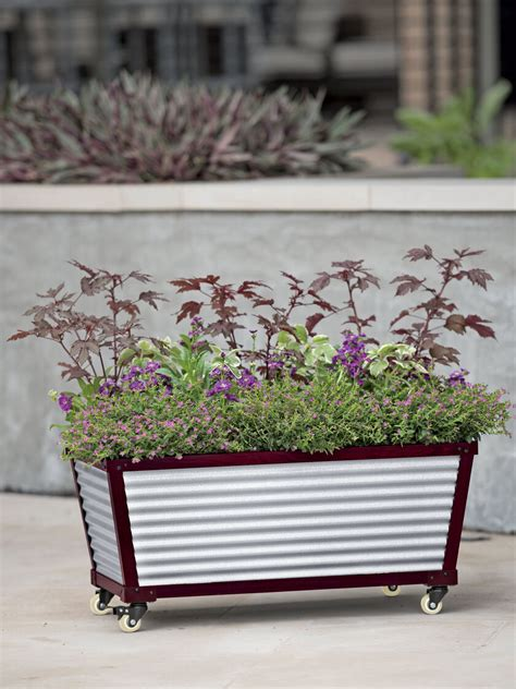 galvanized  watering short trough planter gardenerscom