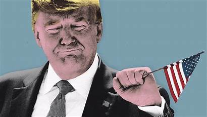 Trump Donald Perfect Filthy Tease Innocent Guilt