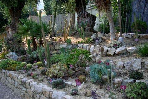 Bienfaits Du Cactus Dans Une Maison by Cactus Et Plantes Succulentes Page 2