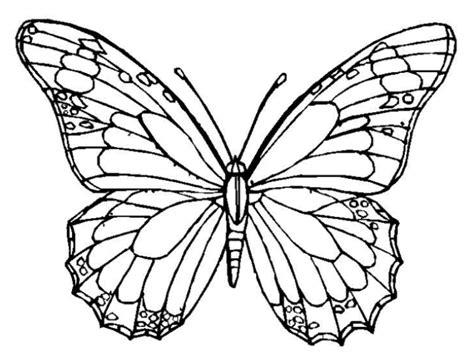 Mewarnai Gambar Kupu-kupu Yang Cantik