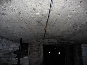 Comment Isoler Sol Pour Vérandas : comment isoler le plafond d 39 une cave d 39 un sous sol ou d ~ Premium-room.com Idées de Décoration