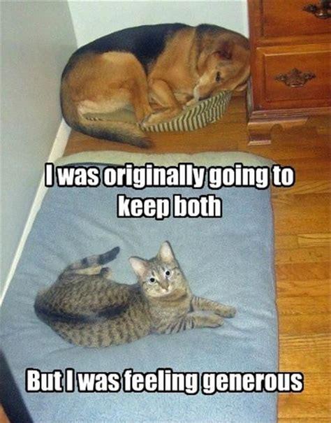 Funny Meme Captions - 30 funny animal captions part 5 30 pics amazing creatures