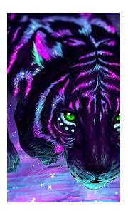 Black Dangerous Tiger Photo Hd - Wallpaper HD New
