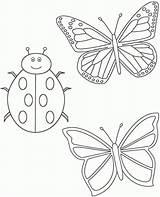 Colorare Coloring Disegni Farfalle Coccinella Ladybug Bambini Gratis Due Cliparts Funeral Disegno Butterflies Library Clipart Clip Stampare Immagini Etichette Segnaposto sketch template