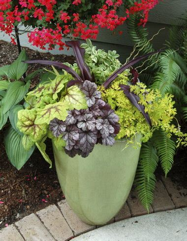 Do You Winter Gardening Blues by Winter Gardening Perennials In Containers Need Protection