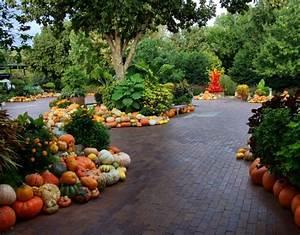 Down the Meadow Fall Landscaping Ideas: Pumpkin Decor