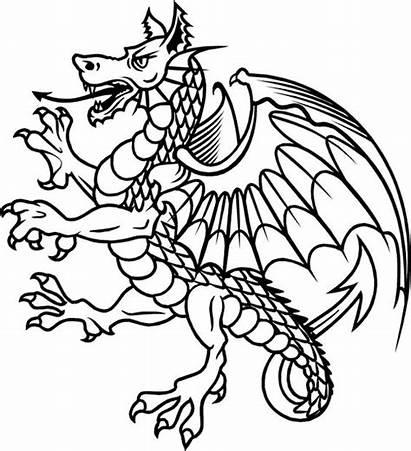 Dragon Rampant Heraldry Heraldic Clipart Google Medieval