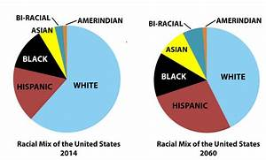 Combatting the Jewish Multicultural Agenda For White ...
