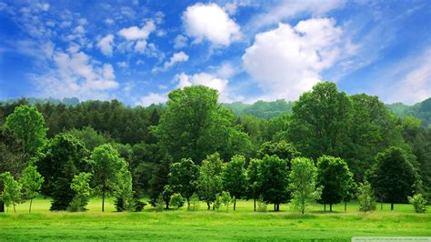 Beautiful Landscape Wallpapers Widescreen  Wallpaper Hd
