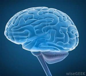 What Is The Connection Between Brain Cancer And Headaches