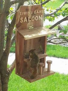 How to make a saloon bird feeder DIY projects for everyone!