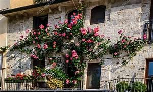 Rosen Für Balkon : balkon rosen bunt stockfoto 83636410 ~ Michelbontemps.com Haus und Dekorationen