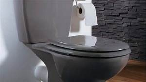 Toilettes Sèches Leroy Merlin : des toilettes design pour s inspirer ~ Melissatoandfro.com Idées de Décoration