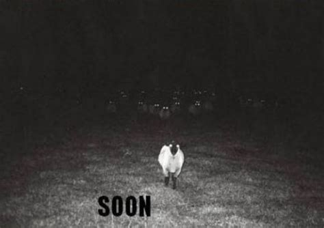 Soon Horse Meme - soon meme collection 17 pics izismile com