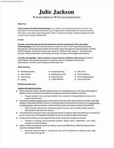 Monster resume template free samples examples format for Free resume templates monster
