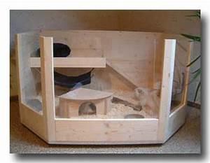 Kaninchenstall Selber Bauen Anleitung Kostenlos : bauanleitung k fig 6 eck f r meerschweinchen kaninchen aus ~ Lizthompson.info Haus und Dekorationen
