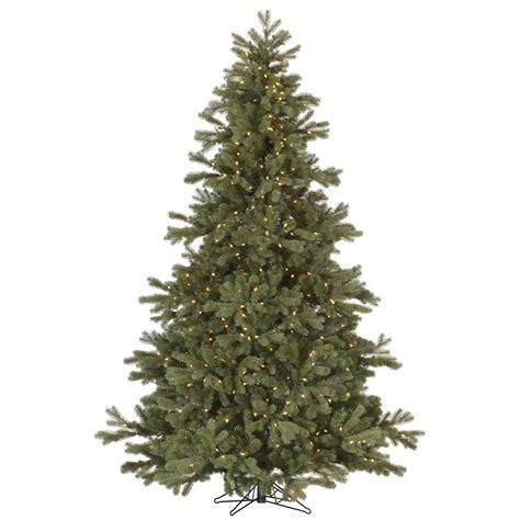 Frasier Christmas Tree by Frasier Fir Christmas Tree Vck4527