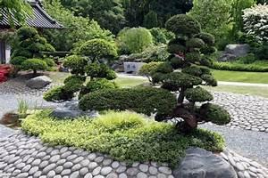 Pflanzen Japanischer Garten : bonsai baum im zen garten gestaltungsideen ~ Lizthompson.info Haus und Dekorationen