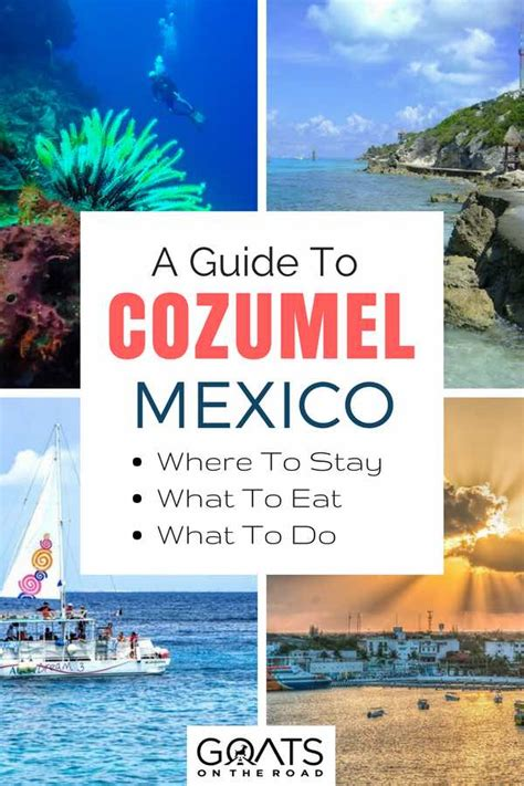 What To Do by 21 Things To Do In Cozumel Mexico S Top Island Goats On